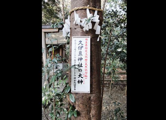 埼玉県指定文化財です